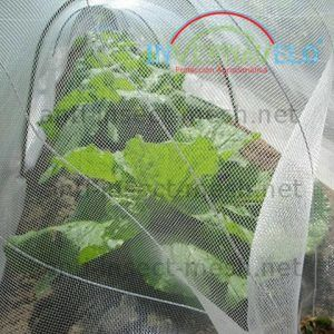 anti insect mesh