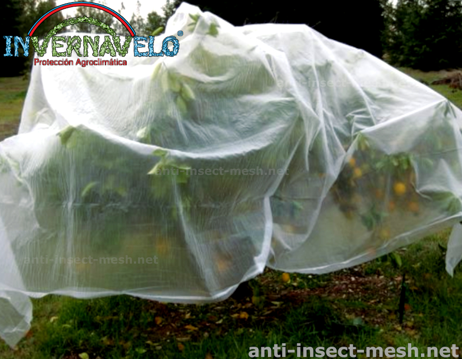 INVERNAVELO,eliminates the use of pesticides to control pests.